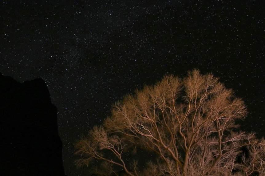 Zion National Park - John Alexis Guerra Gómez via Flickr