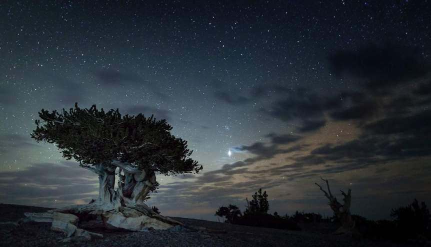 Best National Parks for Stargazing - Great Basin