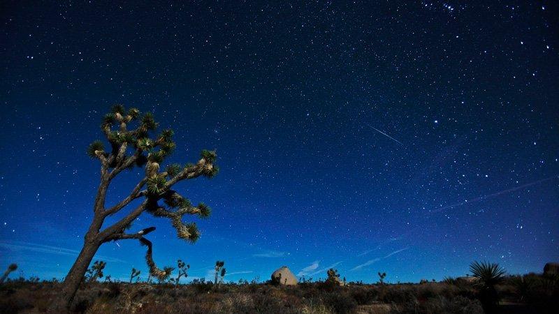 Geminids Meteor Shower - Henry Lee via Flickr