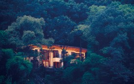 Forest Wellness Experience in Sichuan