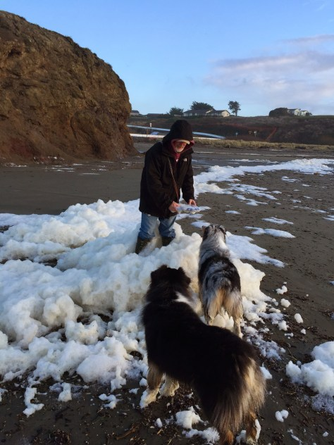 Steve, Casey and Quin in the sea foam
