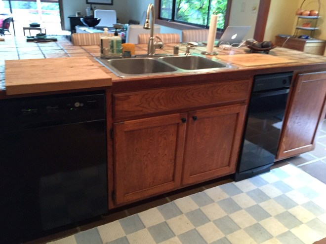 Island sink and dishwasher