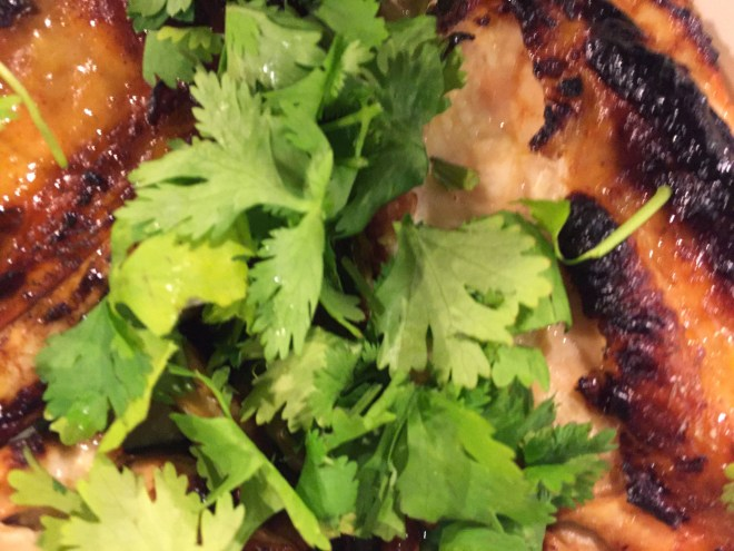 Chicken with Chili Lime Marinade