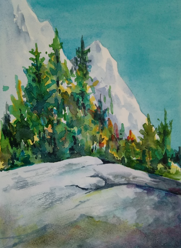 rock in Yosemite