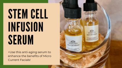 Best Anti Aging Serum on the Market