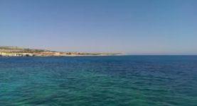 cipru1