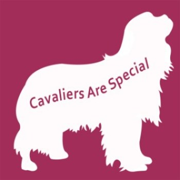 cavalierarespecial-logo