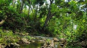 spanish-creek-belize-photo-15