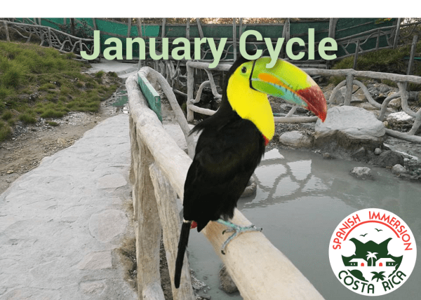 January Spanish Immersion Cycle