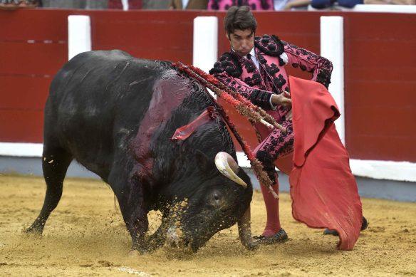 Sentencian las corridas de toros en Colombia
