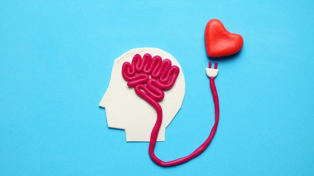 Las flechas de Cupido cambian de dirección: el amor está en el cerebro