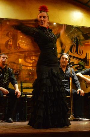 Spark Spanish school tours watch flamenco show