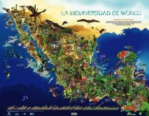 Biodiversidad-1