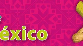 POSADAS EN MEXICO