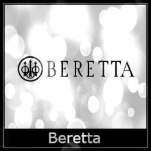 Beretta Air Rifle Spares Logo