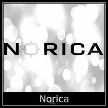 Norica Air Rifle Spares Logo