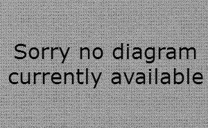 No Diagram