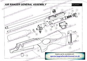 Daystate Air Ranger Exploded Parts Diagram