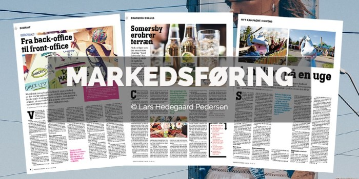 Lars Hedegaard Pedersen - Markedsføring Portfolio