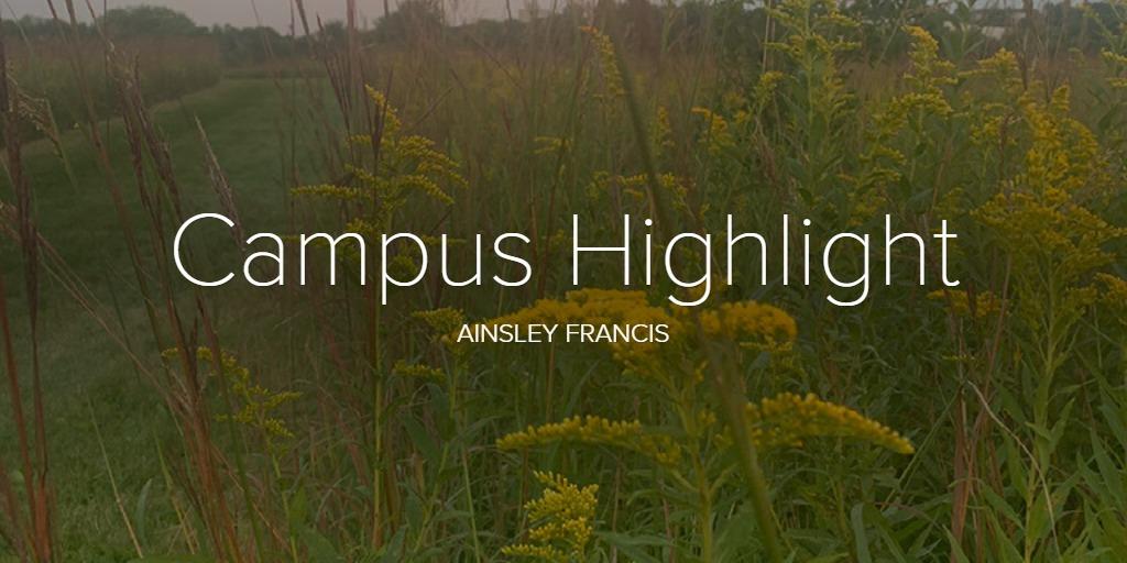 Campus Highlight