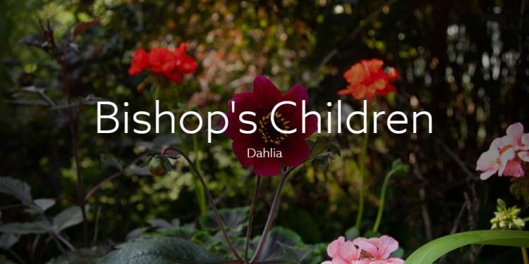 Bishop's Children