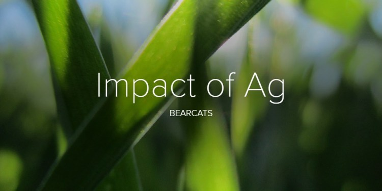 Impact of Ag