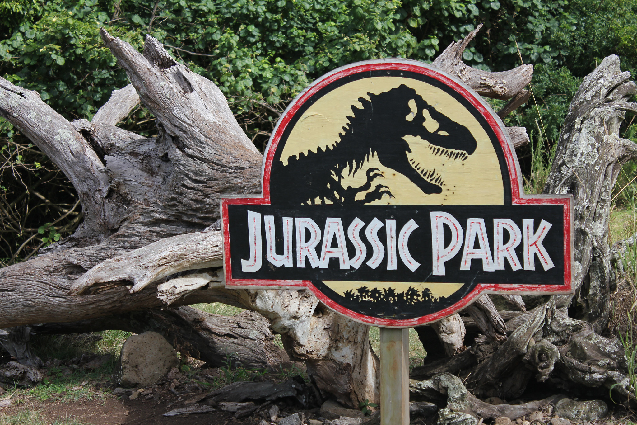 """When the book jacket design was licensed for the 1993 movie Jurassic Park, the drawing was unchanged, but some changes were made, which you can see in this photo from Hawaii's Kualoa Ranch movie tour. The film designers added some silhouettes of trees, some color, and a circle border to form a round logo; meanwhile, designer Mike Salisbury chose the font Neuland for the words """"Jurassic Park."""" Photo: Will Fisher / Flickr CC BY-SA 2.0"""