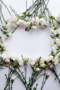 white roses making a border