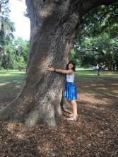 Still love trees.