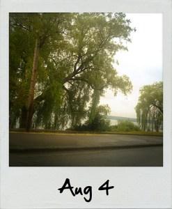 Polaroid | Aug 4