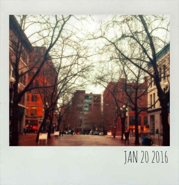Polaroid Jan 20
