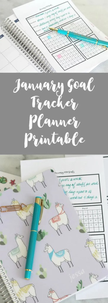 Keep track of your progress towards your goals this month with this free planner printable!