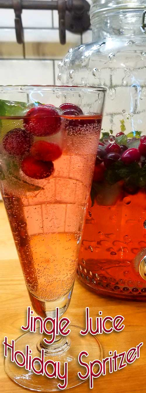 We love to raise our glass during the holidays and we've got a festive Jingle Juice Spritzer to help you ring in the New Year! It went so fast, I almost didn't get a picture!