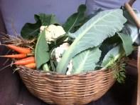 This weeks veggie basket