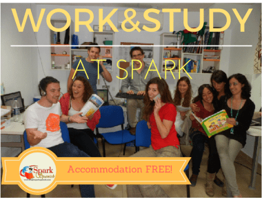 Staff in office of Spark