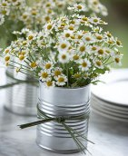 Simple daisies in a tin cup from MariaMcBride.com