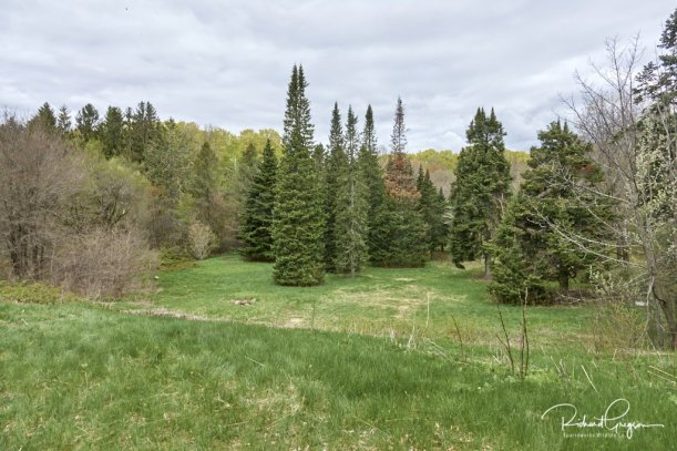 Begin by going down the slope and keeping to the left of the trees in the field below
