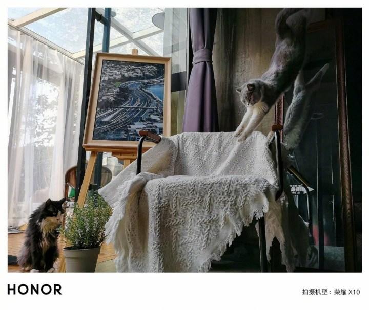 """Honor X10 """"Eagle Eye"""" AI snapshot"""