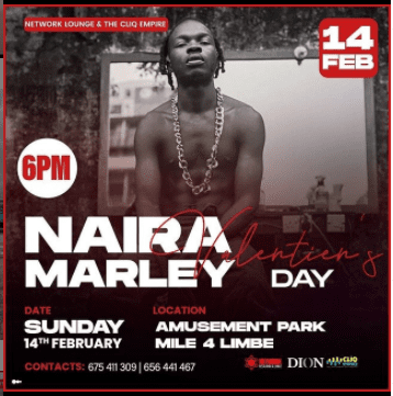 Here's Why Naira Marley's Concert Was Cancelled in Cameroon