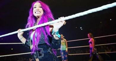 WWE: Quali Superstars hanno avuto più match a partire dal brand split?