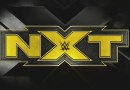 WWE: Superstar di NXT rimossa dal roster