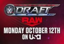 WWE: NXT farà parte del Draft?