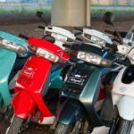пункт проката скутеров Motogorod