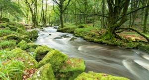 Cornish river