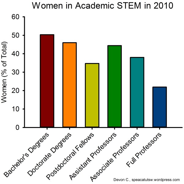 Women in Stem Academic Pipeline