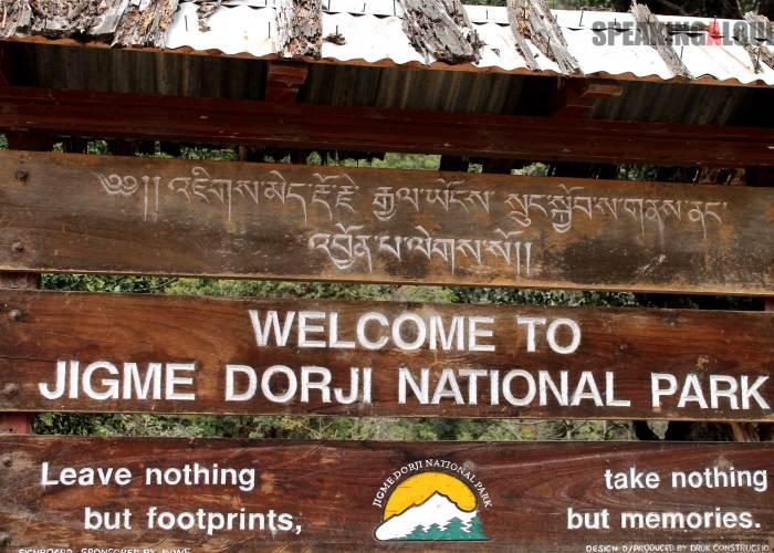 Jigme Dorji National Park travel guide