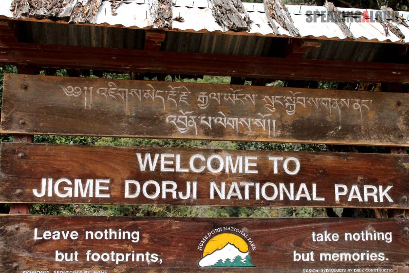 Jigme Dorji National Park travel guide
