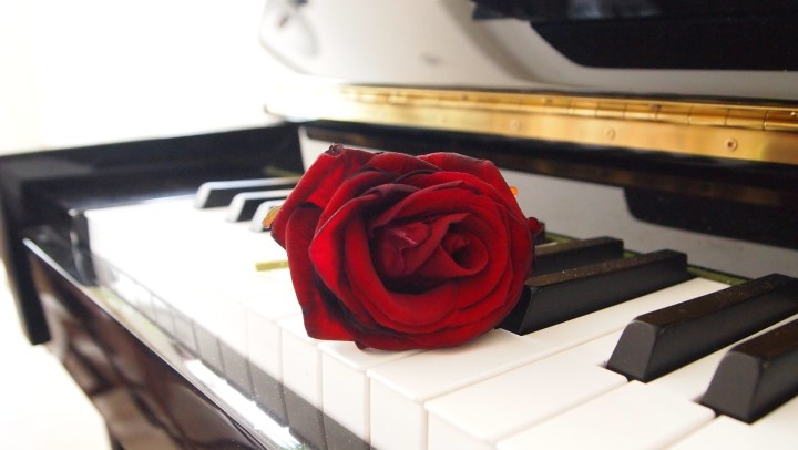 A red rose on a piano keyboard. Your broken parts don't define you even if living with mental illness makes it feel that way. Learn a lesson from a beautiful song about Marilyn Monroe. | #bipolar #feelbroken #mentalillness #chronicillness