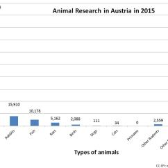Use Animal Research Diagram Humpback Whale Skeleton Annual Statistics  Speaking Of