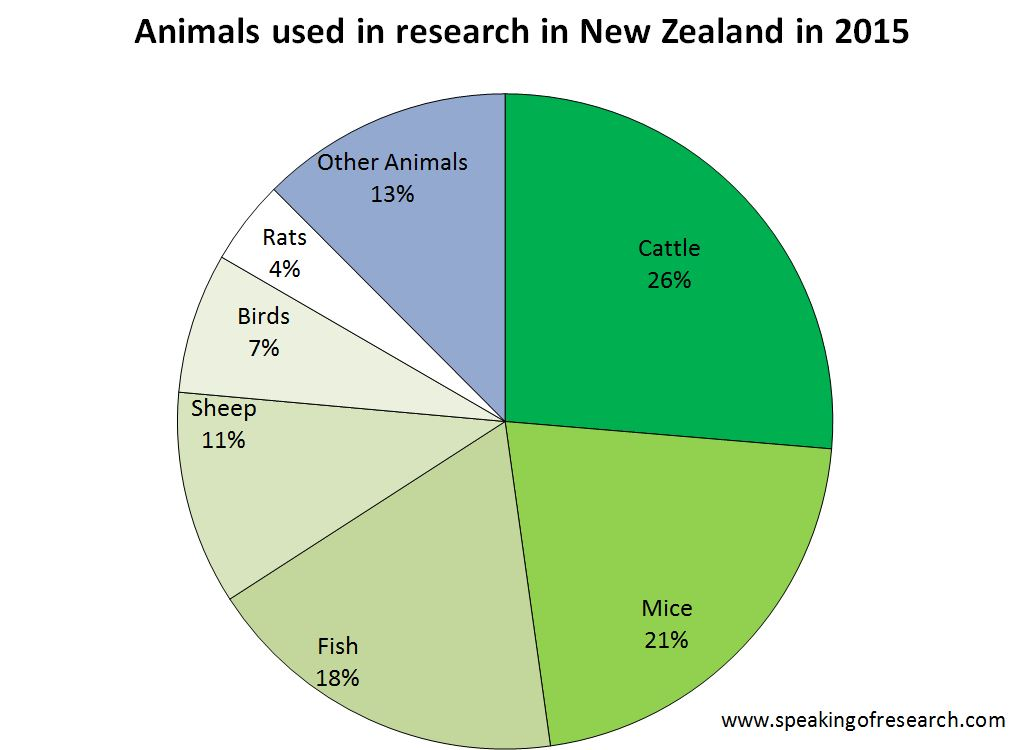 use animal research diagram object oriented analysis and design diagrams new zealand publishes statistics showing of animals in by species pie